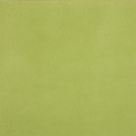 Vert Anis - Vert Anis 100 grammes